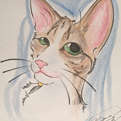 Pet Caricature